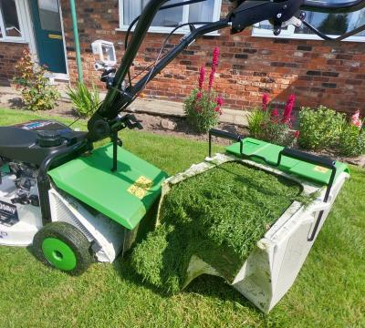 etesia mower grassbox grass full freshly cutted