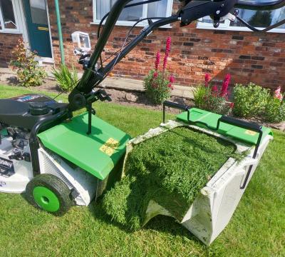 etesia mower grassbox grass full freshly cutted